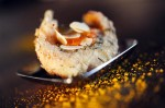 fish and apricot
